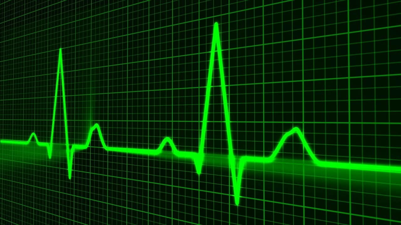 Fernstudium Gesundheitsökonomie - E-Health - Lebenszeichen