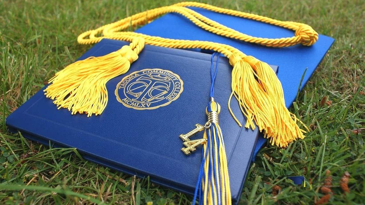 Fernstudium Wirtschaftsinformatik Graduierung Bachelor