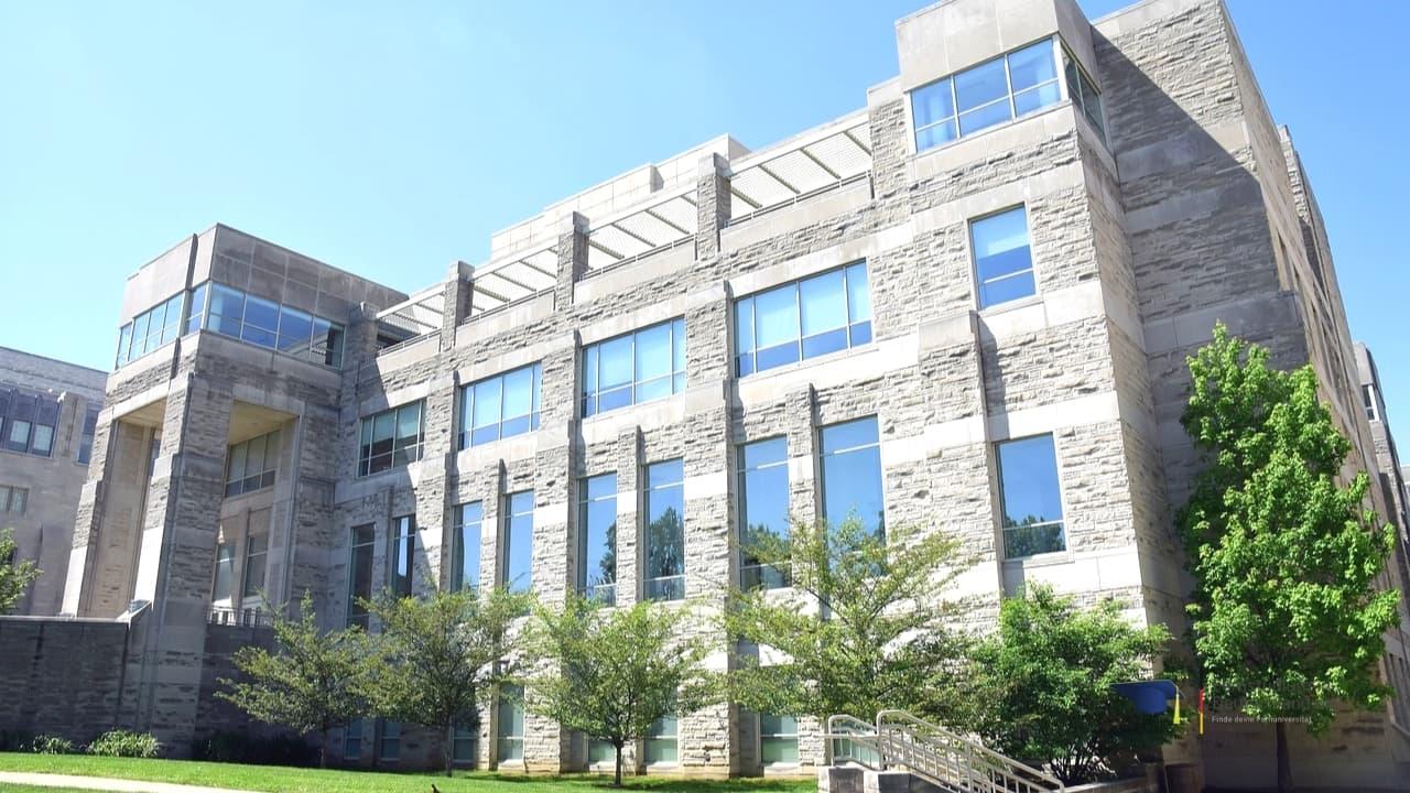 MBA Fernstudium Fernuni