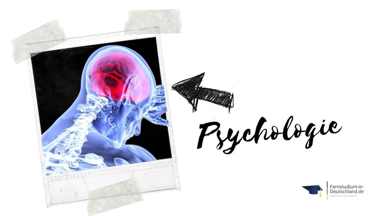 Fernuni Psychologie Vergleich Wirtschaftspschologie